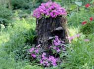 آموزش درست کردن گلدان از تنه درخت بریده