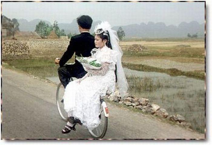 عکس های بامزه و طنزخرداد 1394