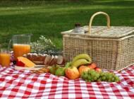 غذاهای مناسب گردش و سفر کوتاه ویژه روزهای گرم تابستان