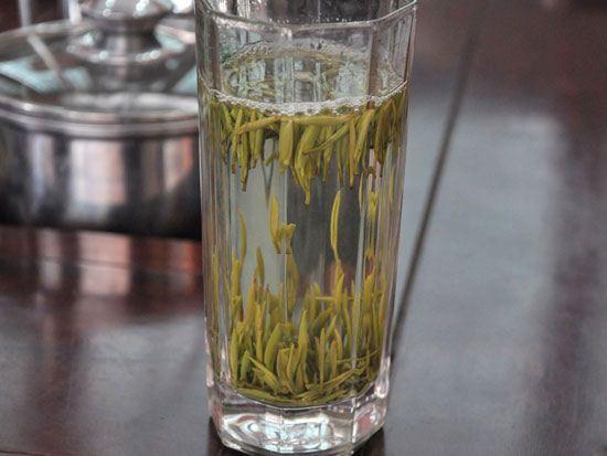 تولید چای جالب ابر و مه در چین