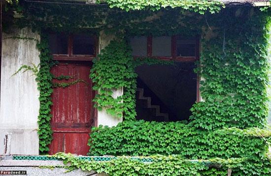 تصاویر زیبایی ترسناک یک روستای متروک در جزیره گوکی