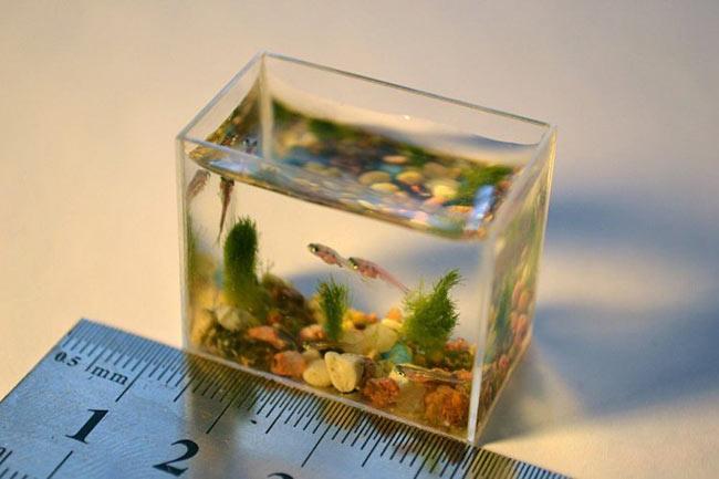 تصاویر کوچکترین اشیا حیوانات و انسان های دنیا