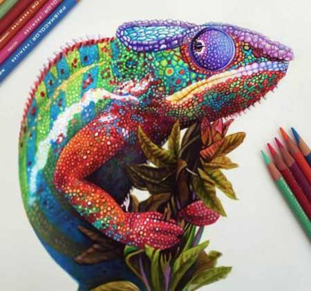 نقاشی های بسیار زیبا و واقعی با مداد رنگی
