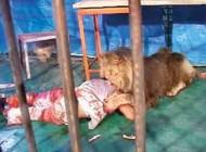 تصاویر خوردن انسان توسط شیر در حال عکاسی