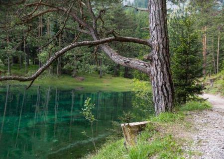 تصاویر این پارک شگفت انگیز که با تمام جزئیات 6 ماه از سال غرق می شود
