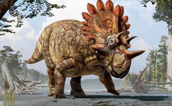 کشف گونه های جدیدی از یک دایناسور شاخدار
