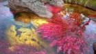 تصاویر جالب و مطالب خواندنی از کانو کریستالز یا رودخانه پنج رنگ