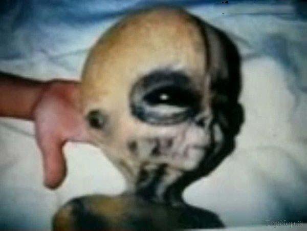 تصاویر عجیب از بیگانگان و آیا آدم فضایی ها وجود دارند