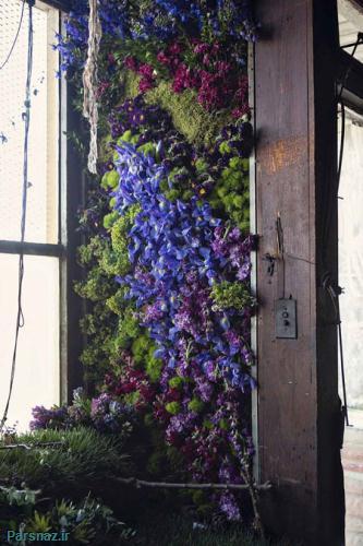زوج خلاقی که این خانه متروکه را تبدیل به گلخانه کردند