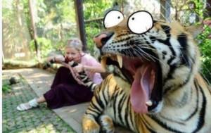 تصاویر خنده دار و بامزه از مردم در گوشه و کنار دنیا