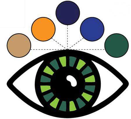 رنگ آرایش مناسب چشمان شما چیست ؟