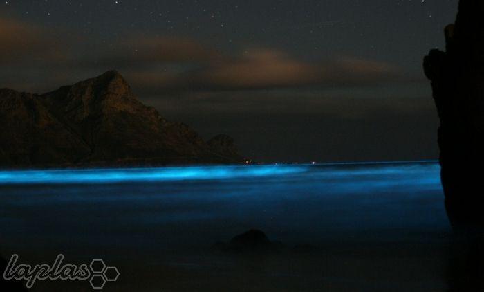 تصاویر زیبا از دریاهای درخشان و رویایی
