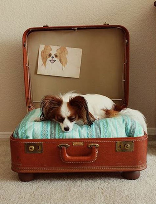 دکوراسیون متفاوت با ایده از چمدان