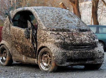 ماشین این آقا پس از هفت سال کف دریا پیدا شد