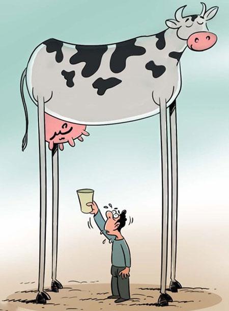 کاریکاتور گرانی و تورم لبنیات