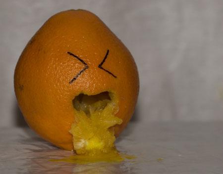 تصاویر طنز از میوه آرایی