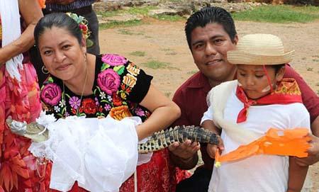 تصاویر عجیب تمساح در لباس عروس