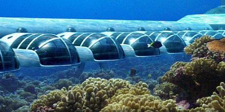 عاقبت 10 روز زندگی زیر آب دریا