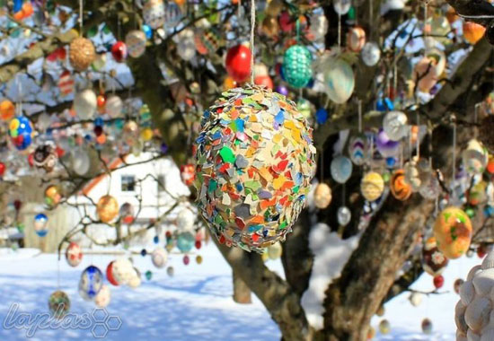 درخت تخم مرغی که تبدیل به یک جاذبه توریستی شده