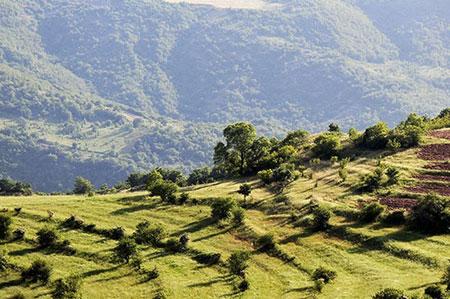 آشنایی با جنگل ارسباران در دل طبیعت آذربایجان