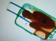 تصویر مرگ دردناک برادر در چمدان برای خروج از مرز