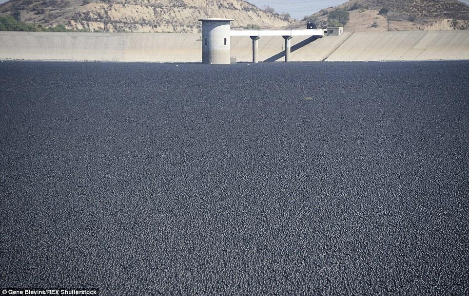 روش جالب جلوگیری از تبخیر آب و آلوده شدن آن در لس آنجلس