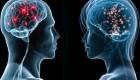 آیا حقیقت دارد که مغز زنان کوچکتر از مغز مردان است؟