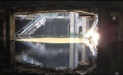 دریاچه مصنوعی ماهیان کوی در مرکز تجاری