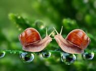 جملات زیبا و آموزنده از بزرگان جهان سری شهریور