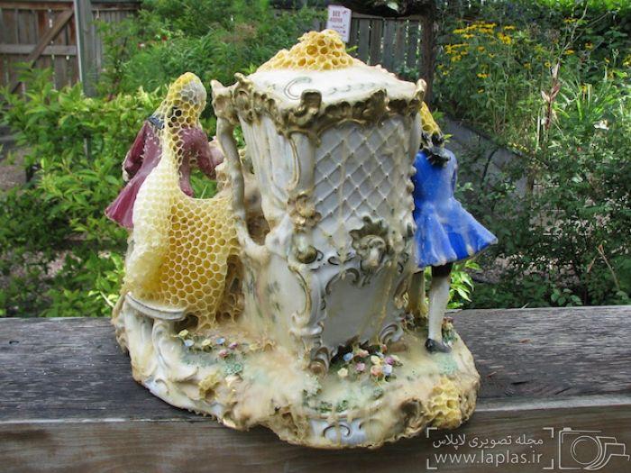 خلاقیت عجیب زنبور ها در مجسمه سازی