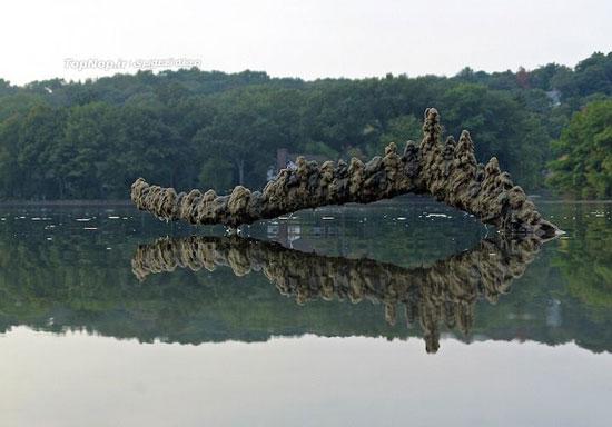 تصاویر بسیار زیبا از مجسمه های معلق شنی
