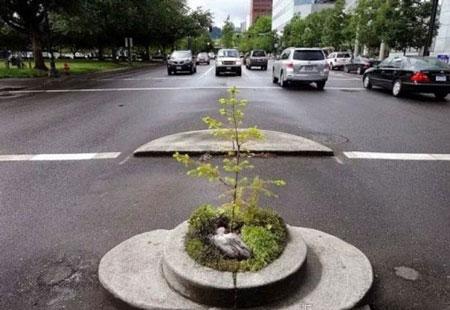 تصاویر کوچکترین پارک دنیا با قطر 2 متر