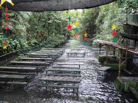 تصاویر رویایی از رستوران آبشار ویلا اسکودرو در فیلیپین
