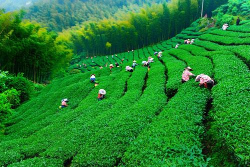 آشنایی با  تایوان، سرزمین لرزان