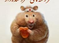 جدیدترین نوشته های طنز خنده دار مهر 94