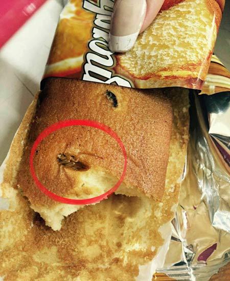 سوسک های پخته در کیک بسته بندی ایرانی + تصاویر