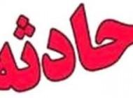 حمله به مادر زن و پدر زن با تبر در بجنورد + عکس