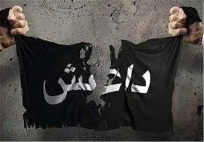 واکنش متفاوت نیکی کریمی و نیوشا ضیغمی به حملات داعش در پاریس