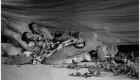 حضور بازیگر زن مشهور بین معتادان کارتن خواب + عکس