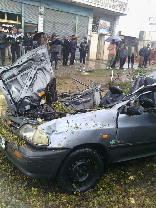 سقوط مرگبار درخت روی پراید 2 نفر را کشت +عکس