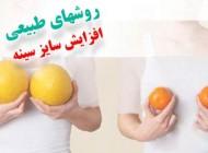 خوراکیهای طبیعی برای بزرگ شدن سینه زنان