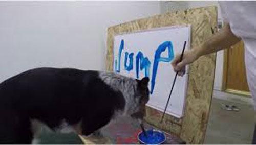 سگ باهوشی که اسم خودش را مینویسد+عکس