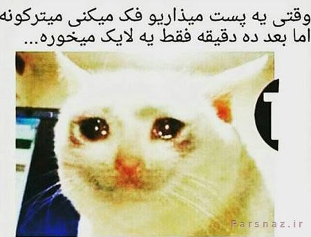 عکس های باحال و خنده دار بهمن 94