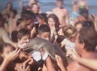 دلفین نادر به خاطر سلفی گرفتن زیاد مردم مرد +عکس