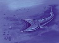 کشف ماهی عجیب با ۹۲ میلیون سال قدمت