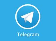 پیام تلگرامی جان زن باردار ایرانی را نجات داد