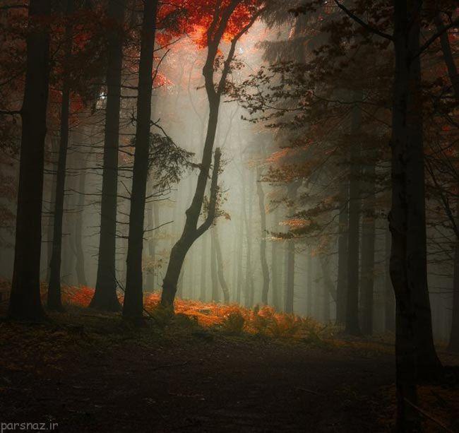 مجموعه ای زیبا و دیدنی از مناظر پاییزی