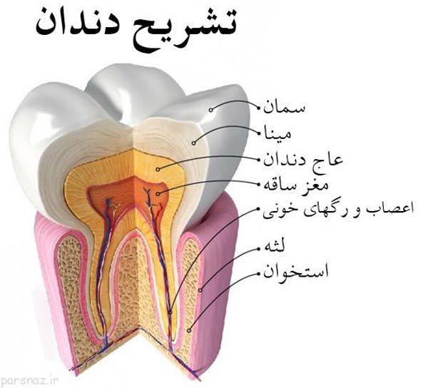 دندان های حساس و توصیه های دندان پزشکان