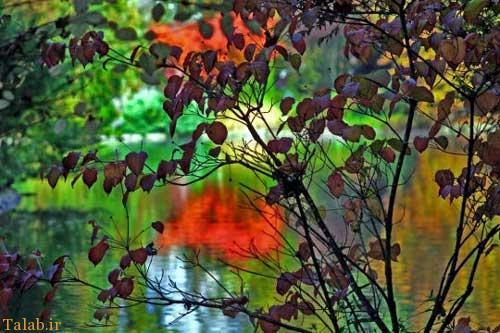 عکسهای طبیعت مناظر در 4 فصل زیبای جهان