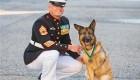 دریافت نشان شجاعت توسط یک سگ!